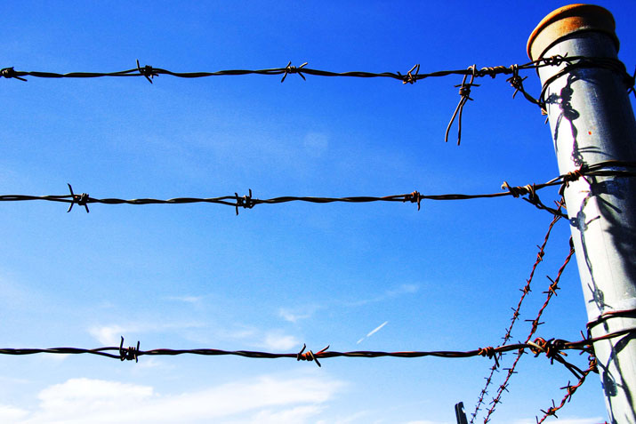 Barbed Wire in Jail